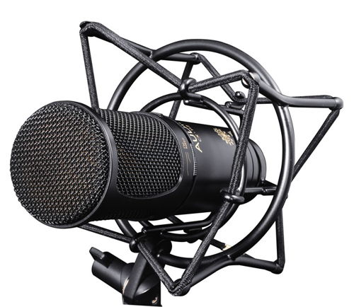 Jaki mikrofon do nagrywania - pojemnościowy czy dynamiczny? Ranking 2017
